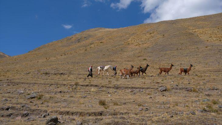 [ペルー] クスコ近郊のチンチェロから日帰りで楽しめるトレッキング2つ